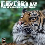 Global Tiger Awareness Day Marketing